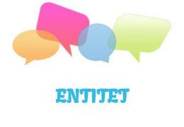 Entitet – značenje,  pojam