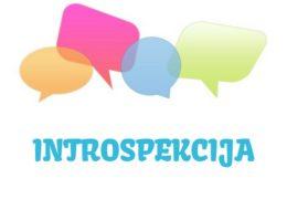 Introspekcija – značenje,  pojam