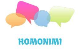 Homonimi - značenje, pojam