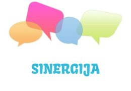 Sinergija - značenje, pojam